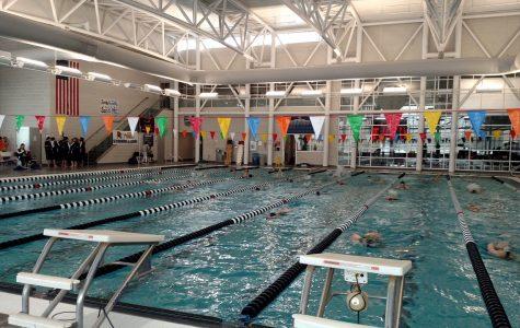 Knights Swimming Recap