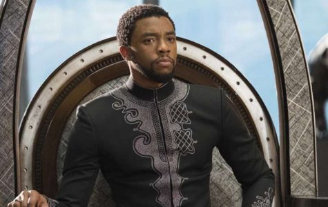 """An In-Depth Review of """"Black Panther"""""""