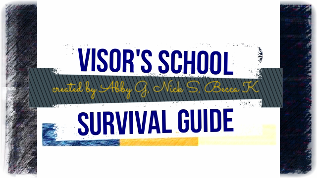 Visor declassified school survival guide #2