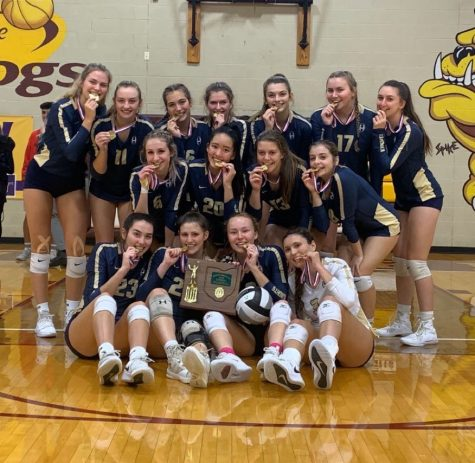 Girls volleyball team wins Division I district championship